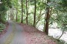 佐野川周辺林道