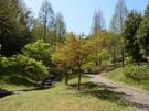 清水日本平運動公園 遊歩道
