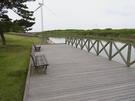 竜洋海洋公園  散策デッキ 川上
