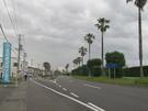 港内道路11号線(ヤシの木通り) 南側から