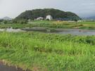 狩野川背後の守山
