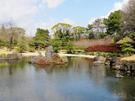 紅葉山庭園 池