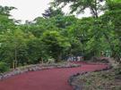 御殿場市富士山交流センター(富士山樹空の森<さくらの散歩道>) 遊歩道